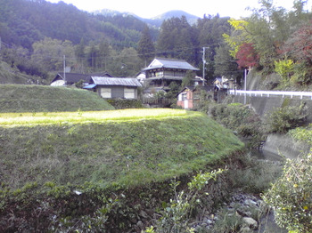 2011_11250072
