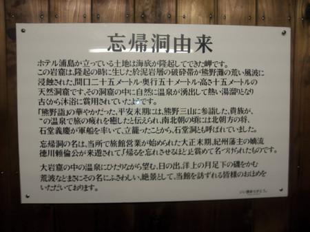 2012_10110381